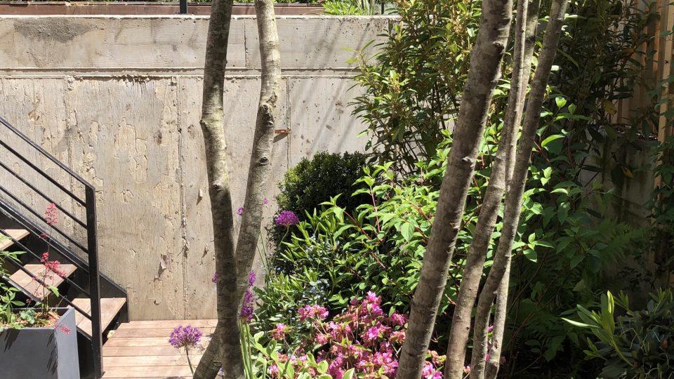 The Bond garden